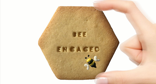 Biscuit Bee engaged